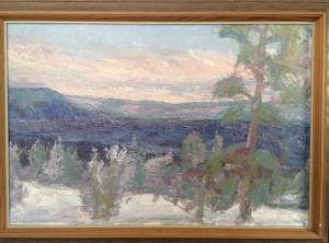Vintermotiv från Funäsdalen (Inköpt-mars-15)